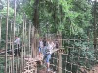 go ape (3)