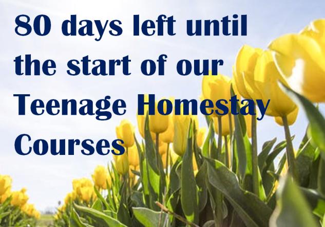 T1 Countdown 2019 yellow tulips